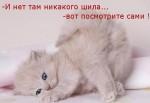 http://thumbnails26.imagebam.com/10494/1efb05104933704.jpg