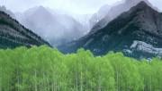 Beautiful Nature Wallpapers - Part 2 B858b0108362682