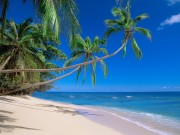 Beautiful Beaches Of The World HQ Wallpapers B5caf8108500669