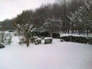 The Snow 2010 412e4e110168289