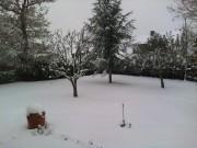 The Snow 2010 546807110168378