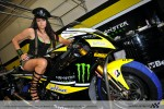 MotoGP Monster Yamaha
